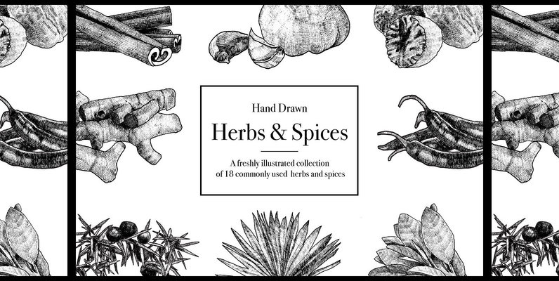 Hand Drawn Herbs   Spices