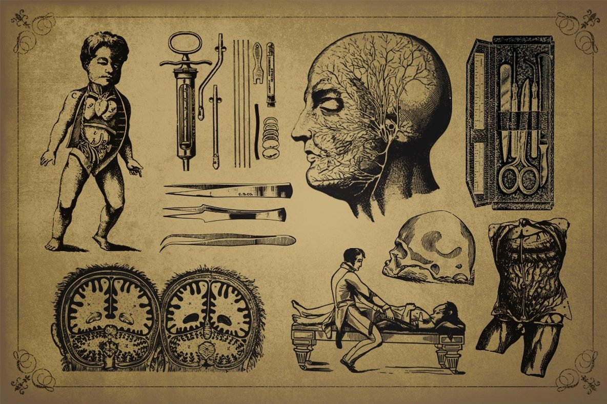 Medical Art   Retro Clip Art   Ephemera Pack