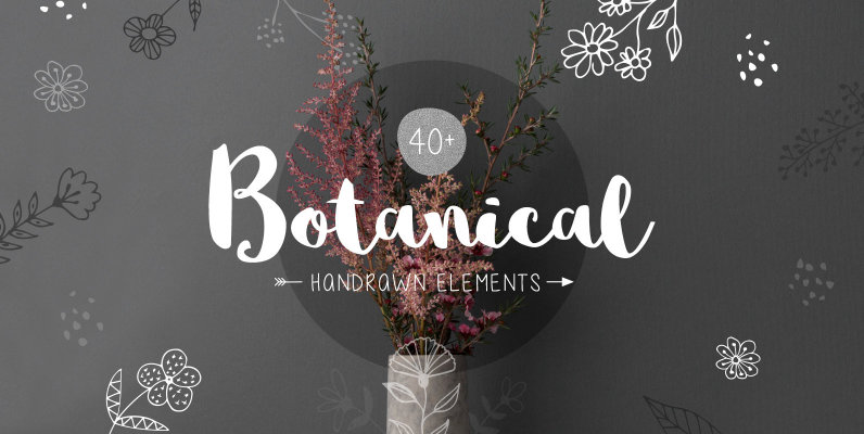 40  Botanical Hand Drawn Elements