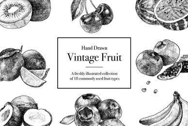 Hand Drawn Vintage Fruit