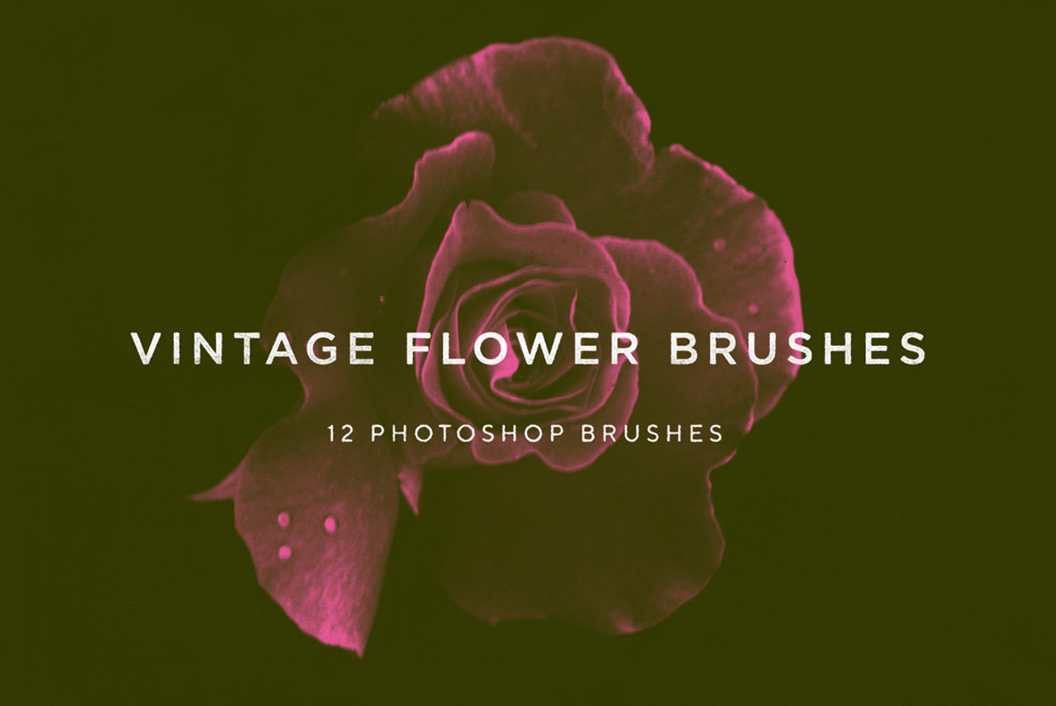 Vintage Flower Brushes