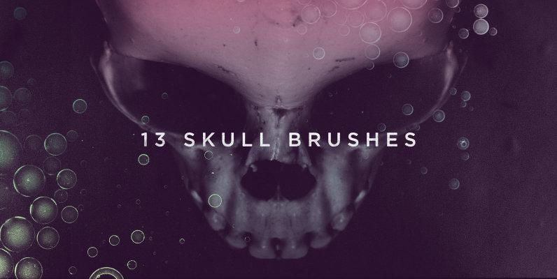 13 Skull Brushes