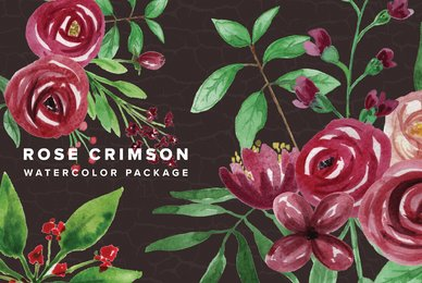 Rose Crimson Watercolor Package