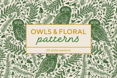 Owls  Floral Patterns