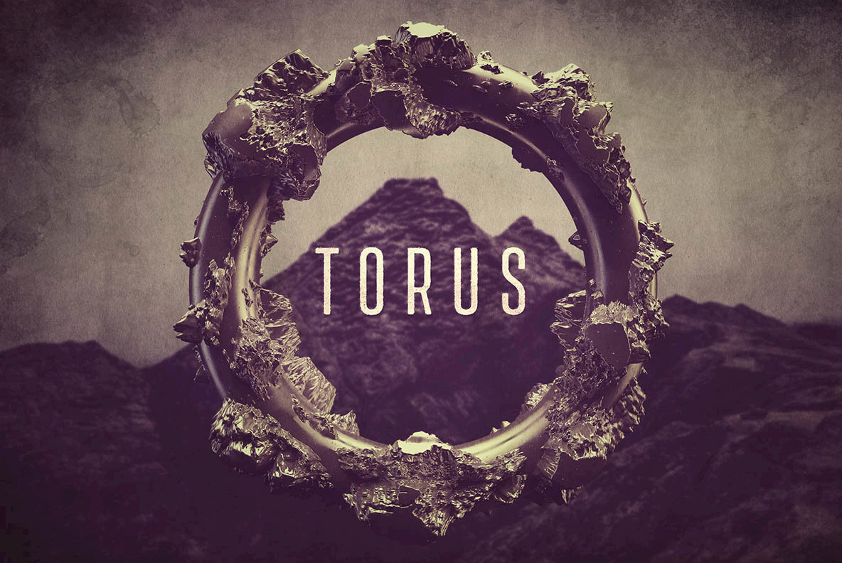 Torus Rings