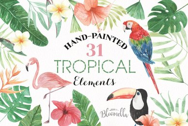 Tropical Elements Watercolor Package