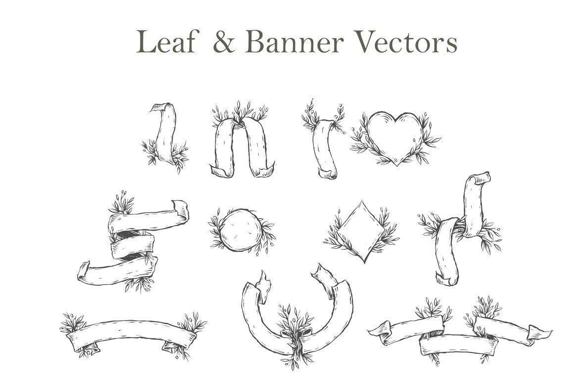 Leaf   Banner Vectors