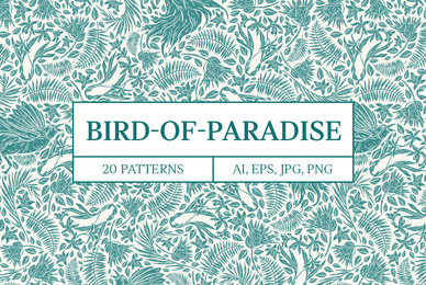 Bird of Paradise Patterns