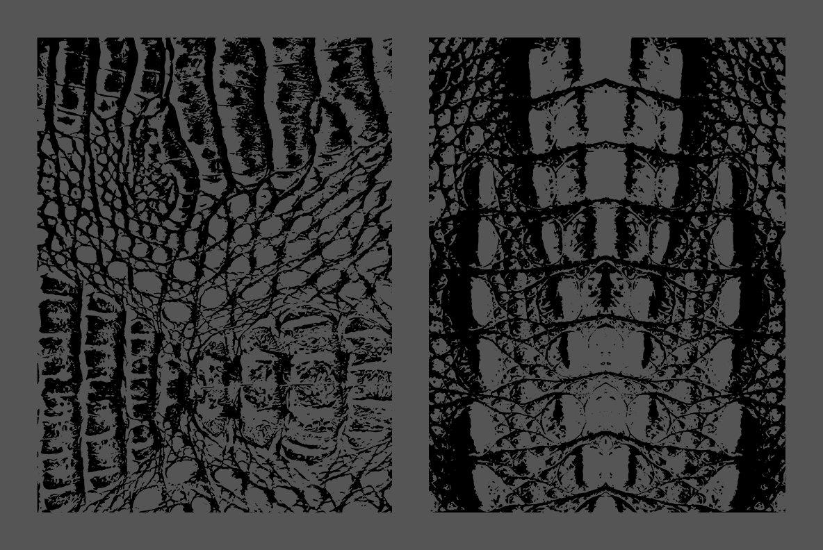 10 Crocodile Leather Texture Overlay