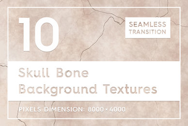 10 Skull Bone Background Textures