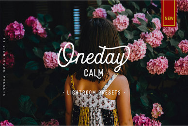 Oneday Calm Lightroom Preset