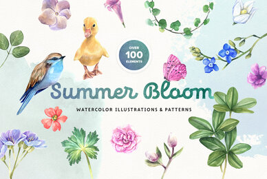 Summer Bloom Watercolor Set