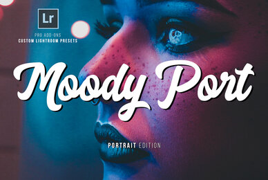 Moody Portrait Lightroom Presets