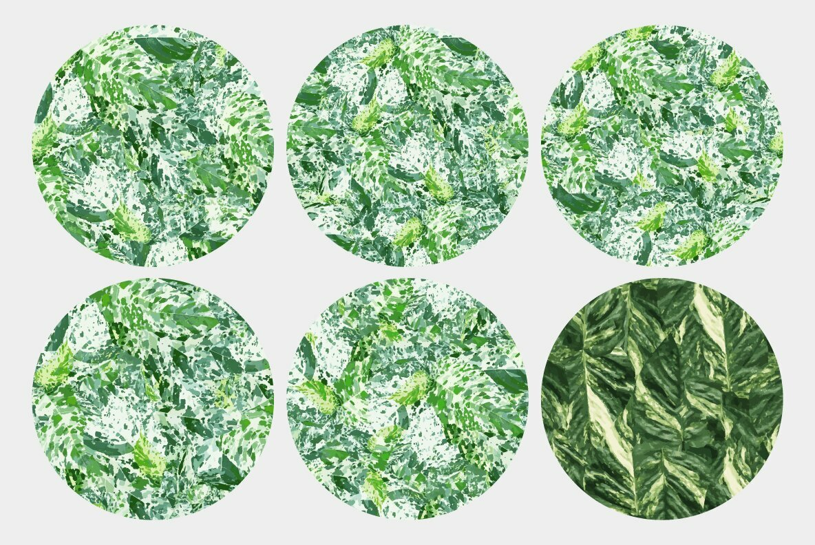 Variegated Plant Textures