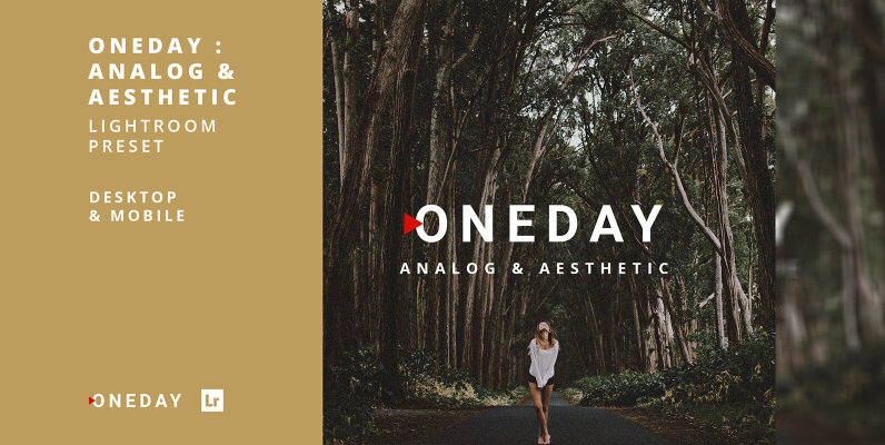 Oneday Analog & Aesthetic Lightroom Presets