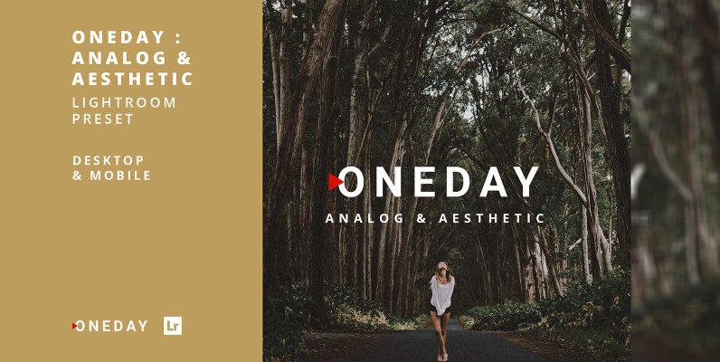 Oneday Analog & Aesthetic Lightroom Presets