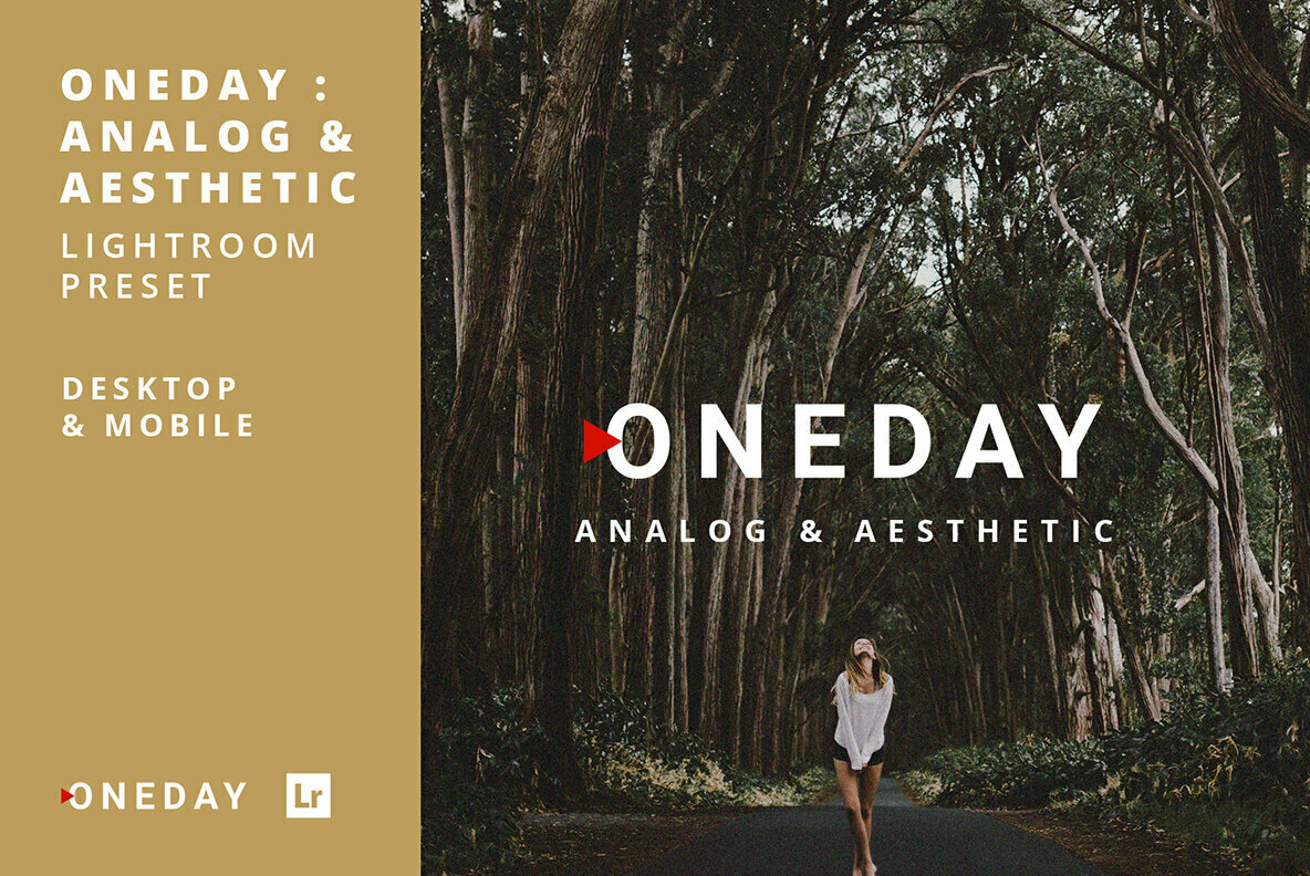 Oneday Analog   Aesthetic Lightroom Presets