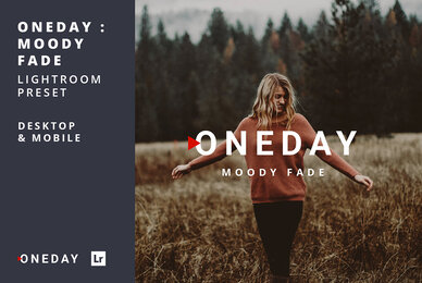 Oneday Moody Fade Lightroom Presets