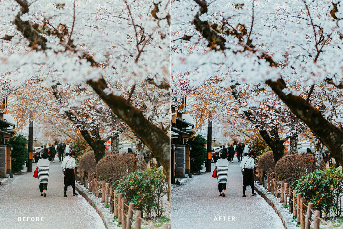 Oneday Bright Lightroom Presets