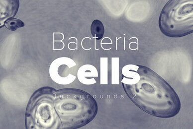 Bacteria Cell Backgrounds 2