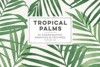 Tropical Palms Digital Graphics
