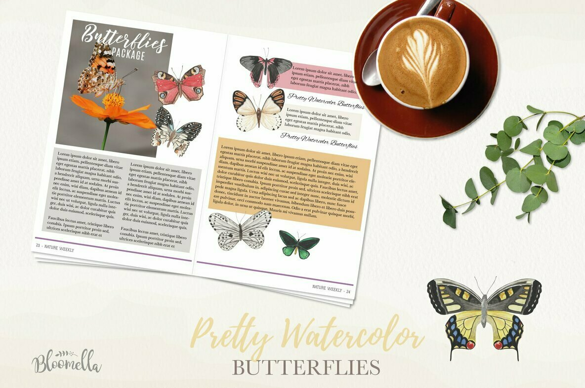 Butterfly Watercolor Package