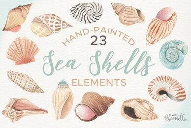 Sea Shells Elements Watercolor Package