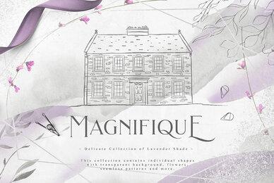 Magnifique Collection
