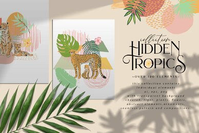 Hidden Tropics Collection