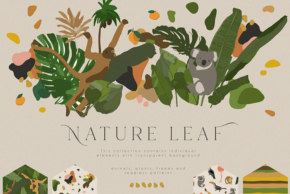Nature Leaf Collection
