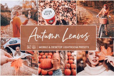 Autumn Leaves   Mobile  Desktop Lightroom Presets