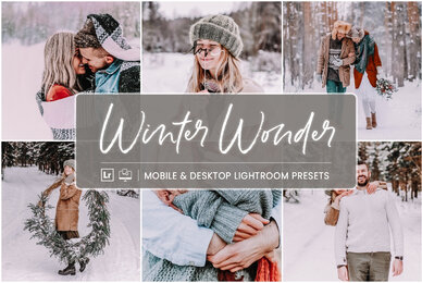 Winter Wonder   Mobile  Desktop Lightroom Presets