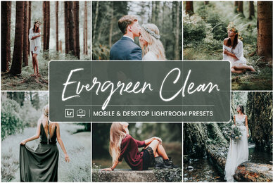 Evergreen Clean   Mobile  Desktop Lightroom Presets
