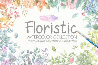 Floristic Watercolor Collection