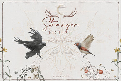 Stranger Forest Collection