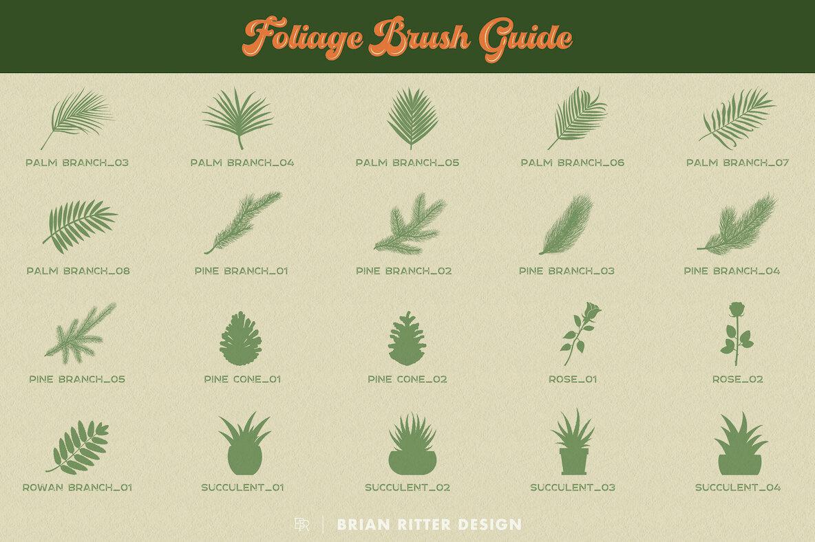 Foliage for Procreate