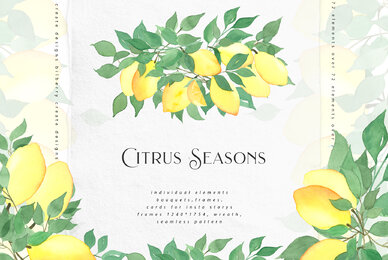 Citrus Seasons