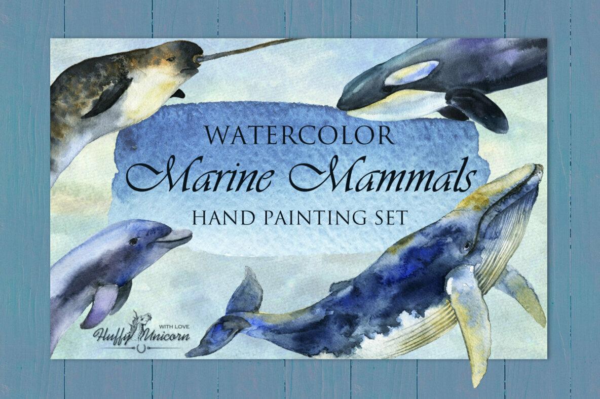 Marine Mammals Watercolor Set