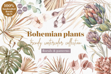 Bohemian Watercolor Plants