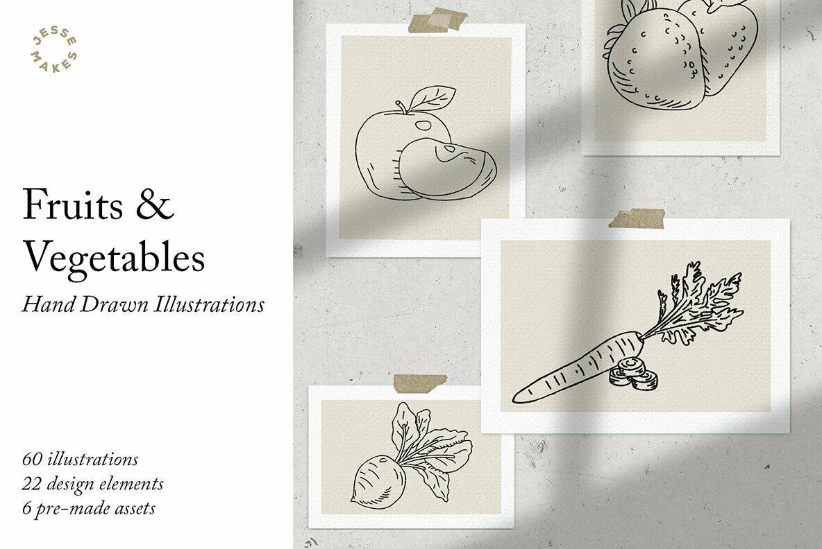Fruits   Vegetables Illustrations
