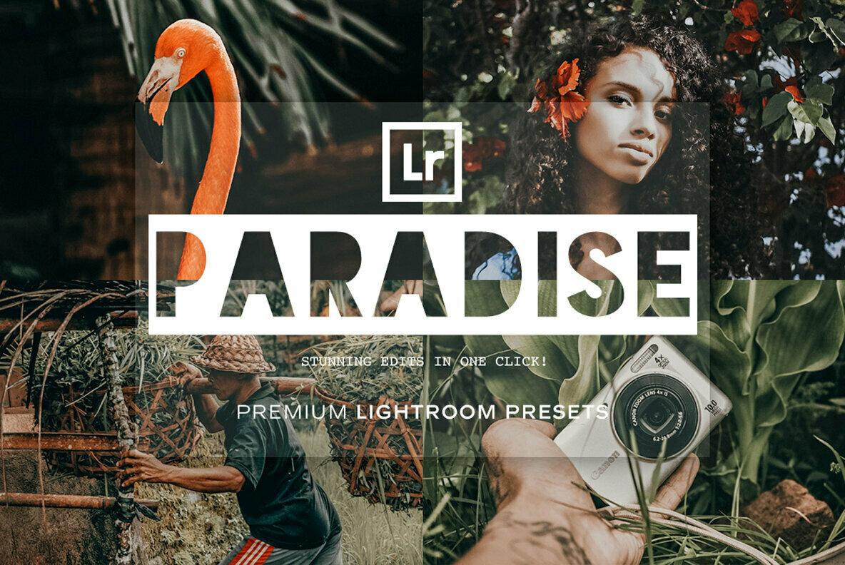 Paradise   Lightroom Presets