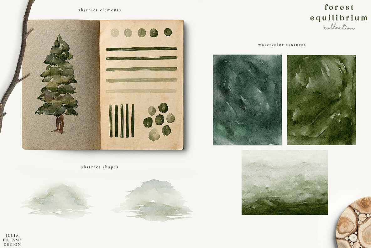 Forest Equilibrium Collection