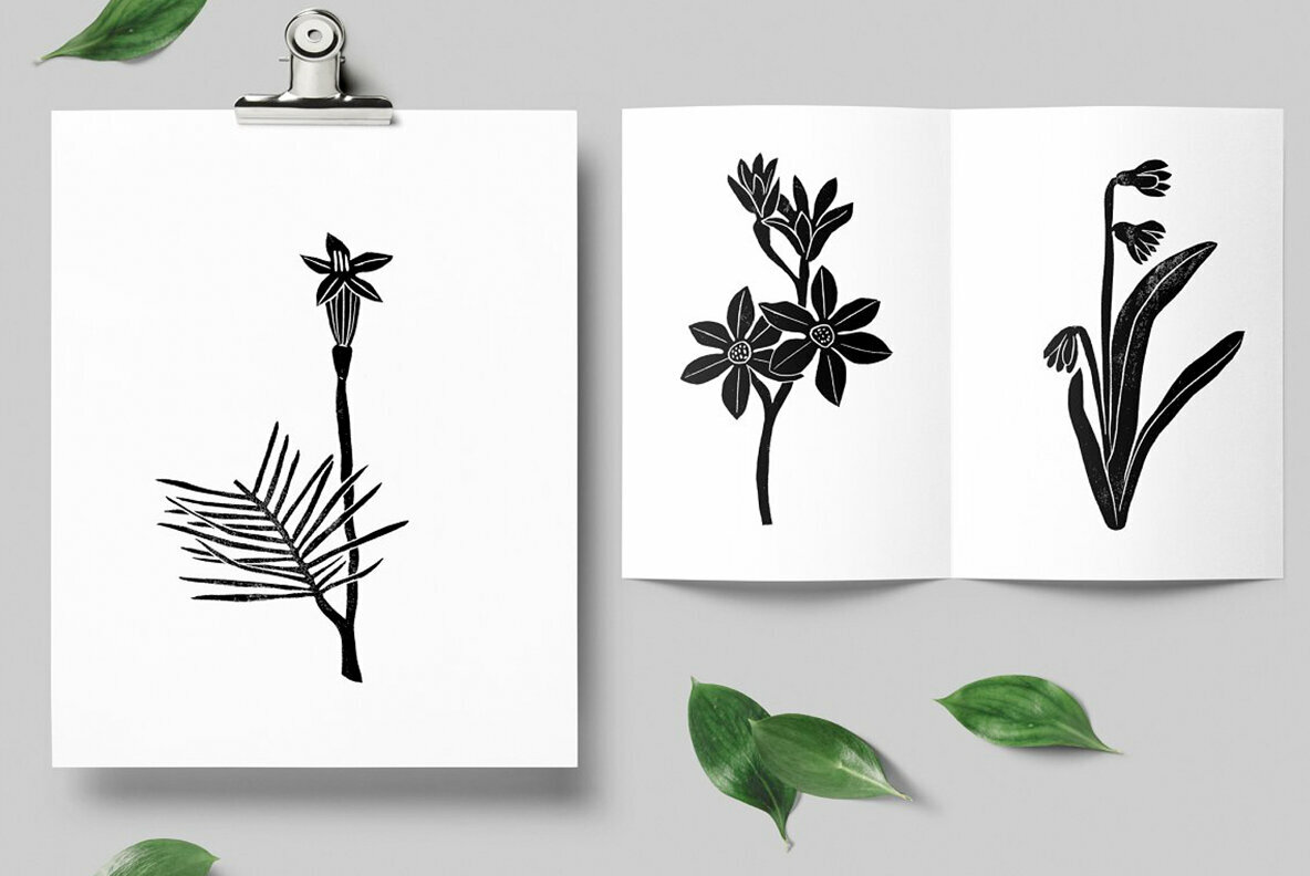 Vintage Botanika