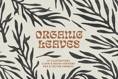 Organic Leaves Illustrations