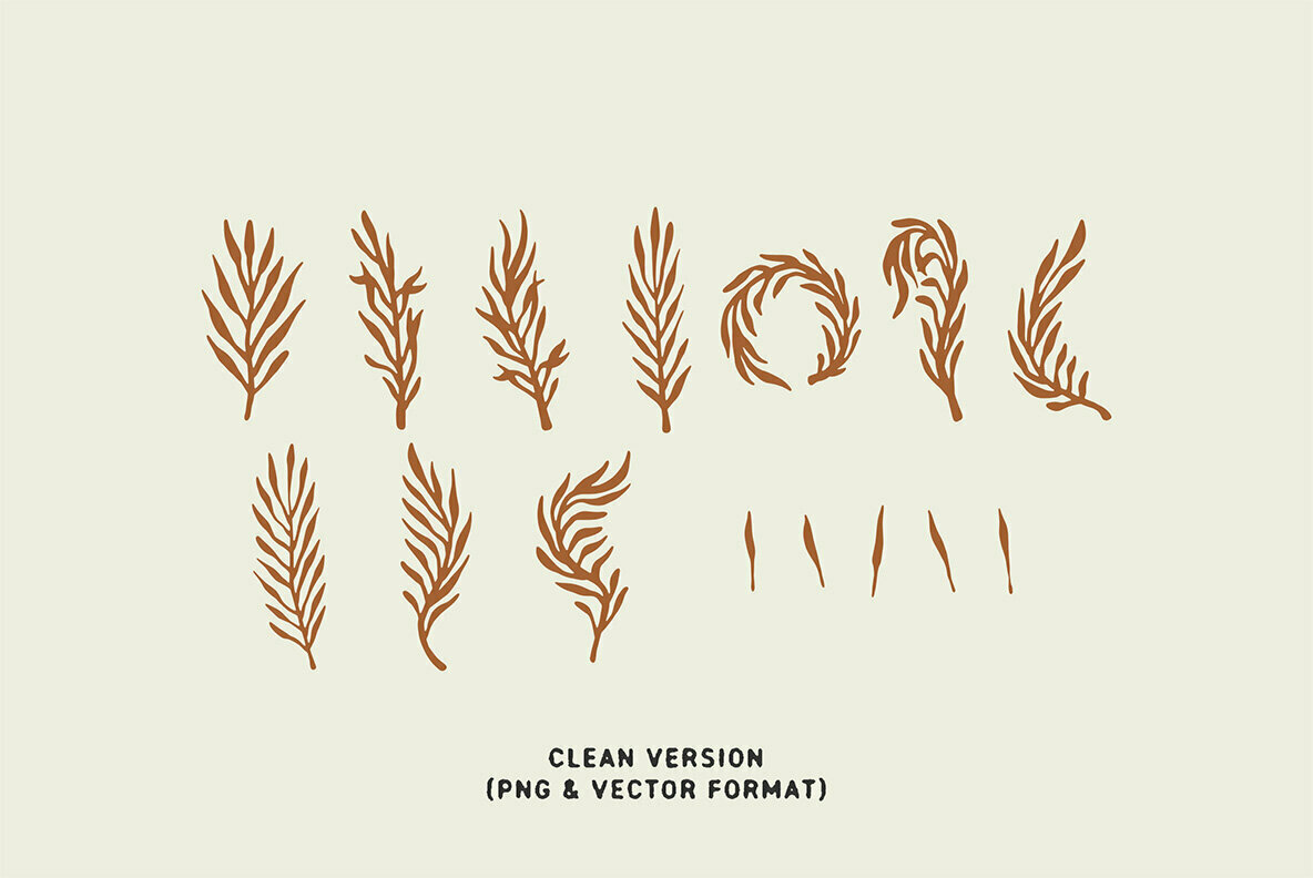 Organic Leaves Illustrations