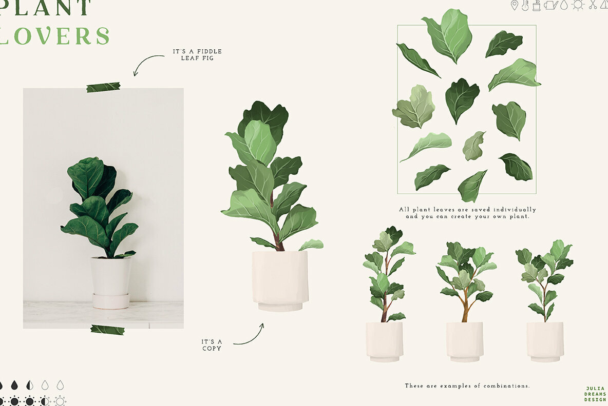Plant Lovers Collection