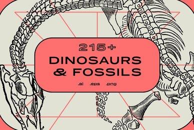 Dinosaurs  Fossils