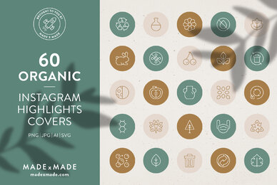 Organic     Instagram Highlight Covers