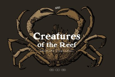 Creatures of the Reef
