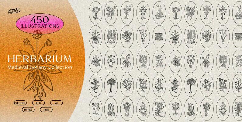 Herbarium   Botanical Collection